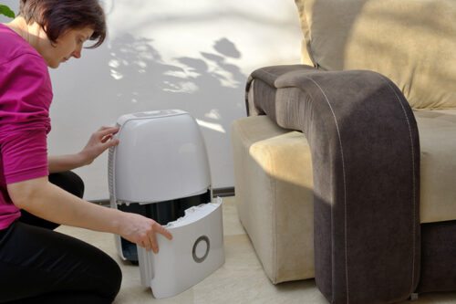 Woman using a de-humidifier for humidity control in her Birmingham, AL home.