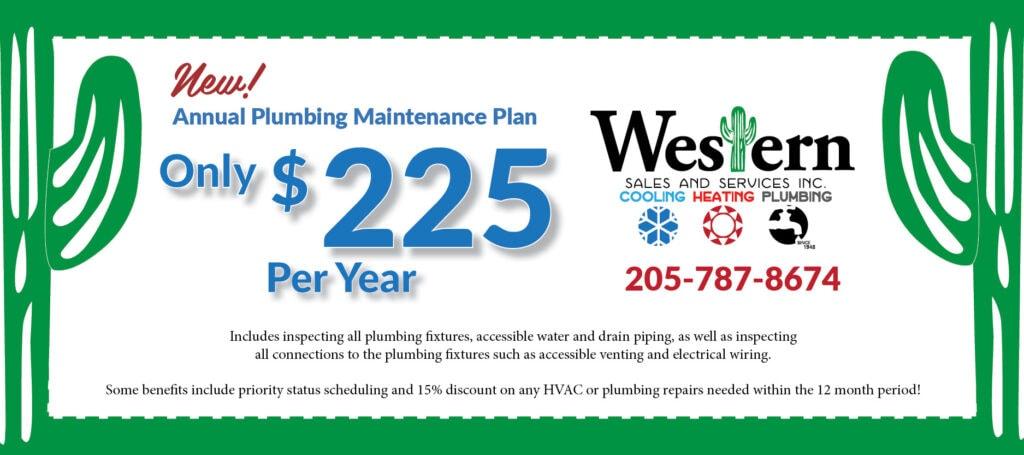 Annual Plumbing Maintenance Plan coupon.