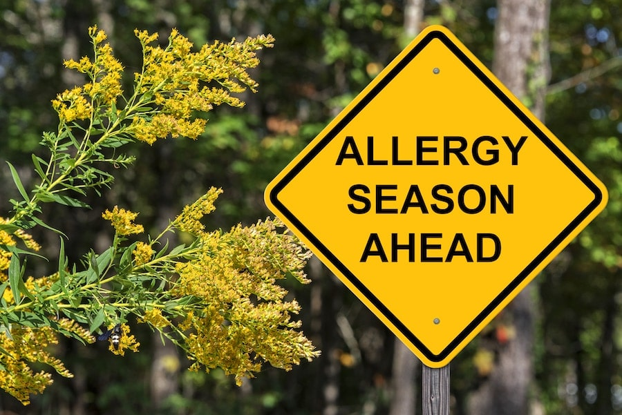 allergy-season-ahead-road-sign