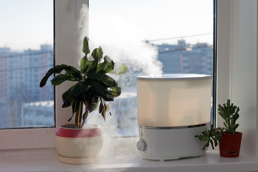 humidifiers-by-window-copy